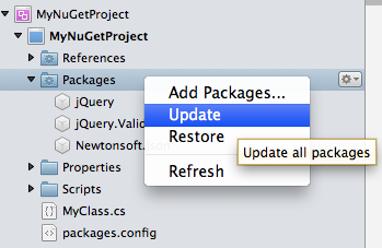 Solution window update all packages in project menu